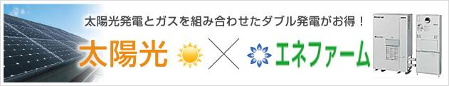太陽光×エネファームエコウィル